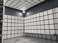 Cage Semi Anechoic Room